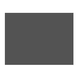 P2link vision